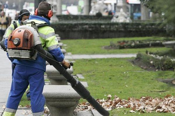 limpieza-de-jardines